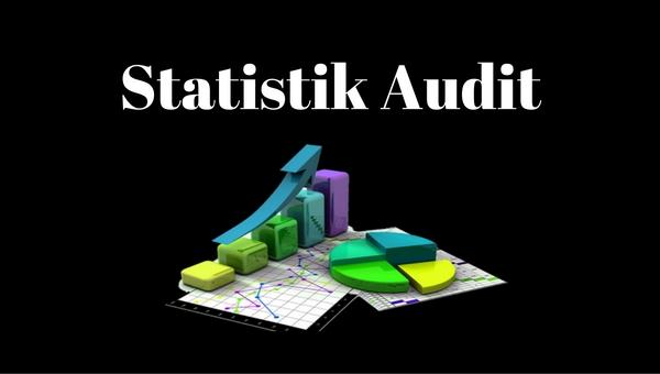 statistik audit