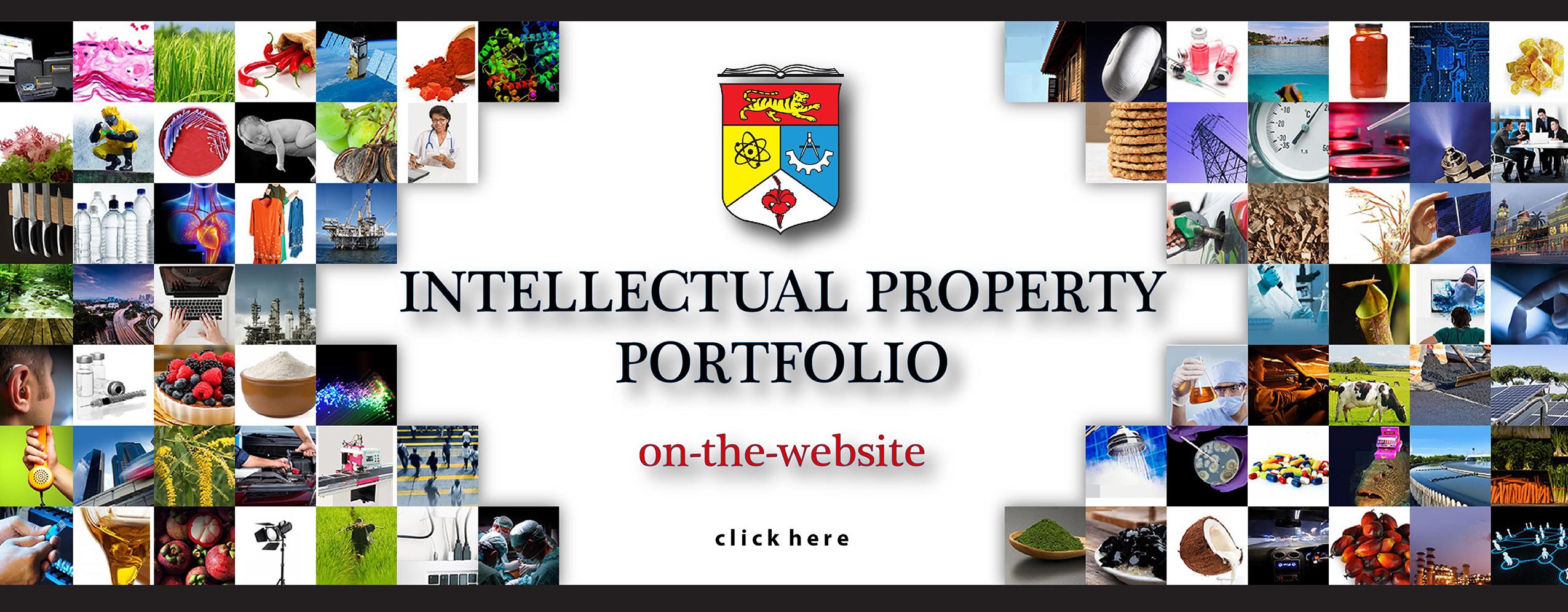IP Portfolio