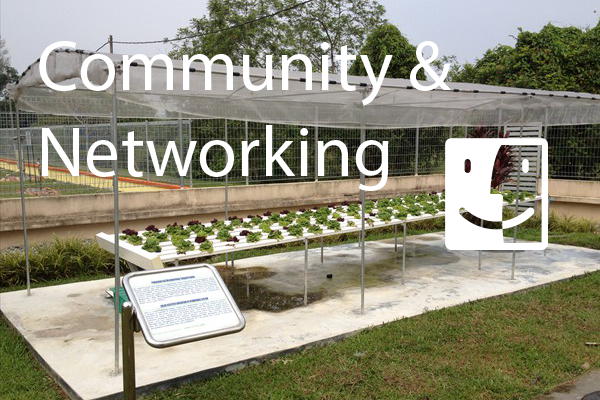 Community & Networking