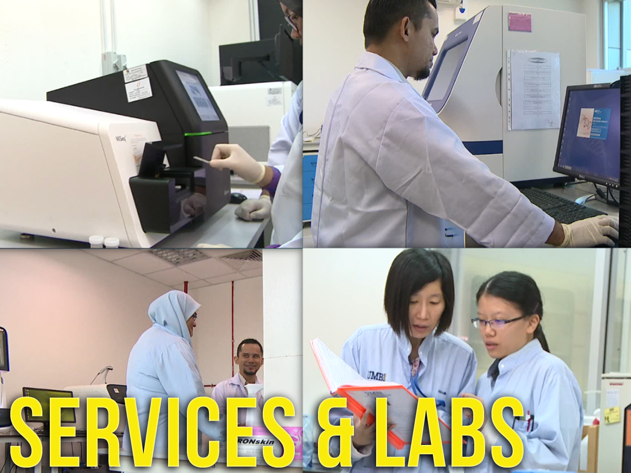 Services & Labs
